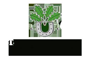 Tenuta della Calandrina